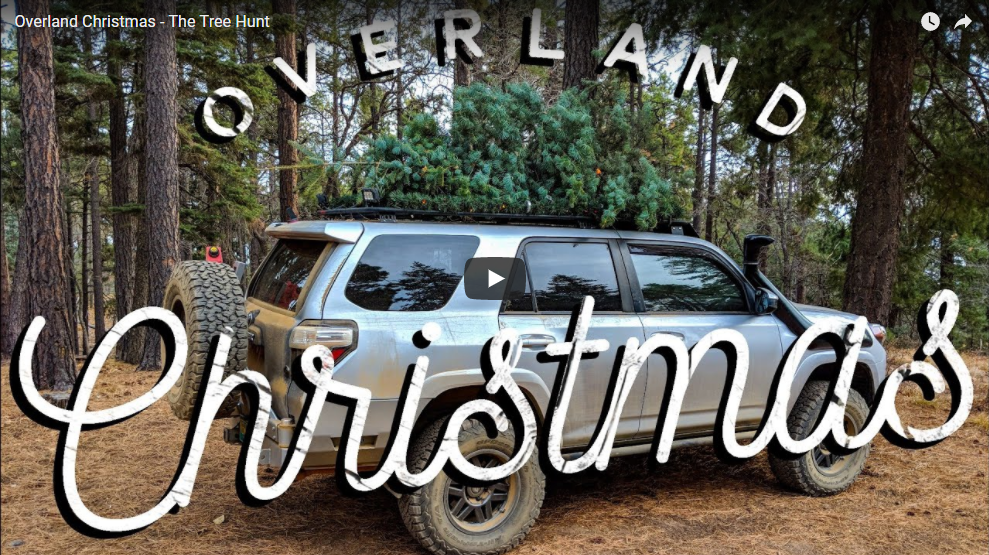 Overland Christmas – The Tree Hunt