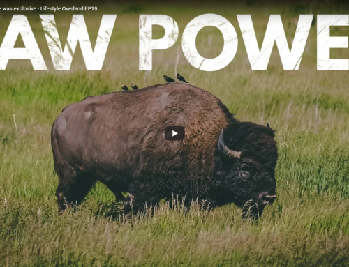 The raw power here was explosive – Lifestyle Overland EP19